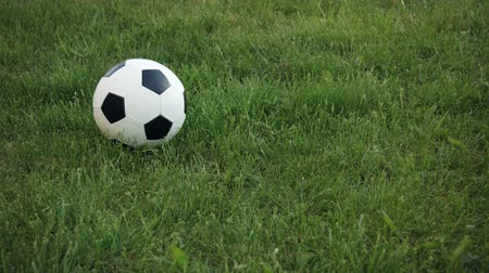 futbol topu : Video 3840x2160 - Closeup shot of a football. with its traditional black and white geometric pattern. dropping and bouncing into frame and coming to rest on a grassy field. Stok Video