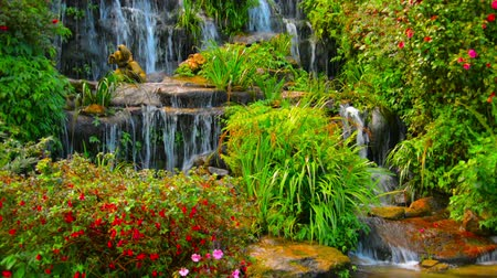 landscaping rocks : 1920x1080 video - Water cascades down a beautiful. artificial waterfall with perfectly maintained plants and flowers placed aesthetically amongst the rocks in Chiang Mai. Thailand.