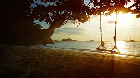 contentamento : UltraHD video - Small waves gently wash this peaceful. tropical beach in Thailands Similan Islands. at sunset.  A rope swing hangs from a tree near the water.