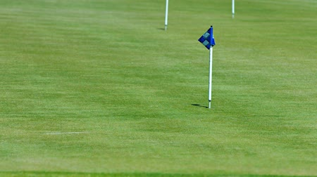 metin alanı : Video UHD 3840x2160  Little flag with a light and dark blue checker pattern. stands marking a hole on a golf course. fluttering gently in a light breeze at midday.