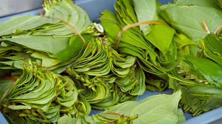 betel : Video 1080p  Betel leaves. chewed for medicinal purposes as a mild stimulant. bundled for sale at a public market.