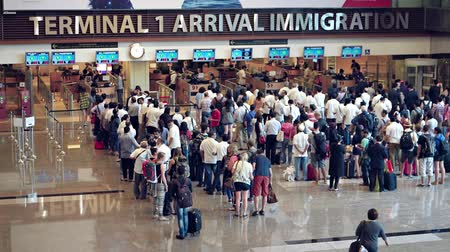 линии : SINGAPORE - CIRCA AUG 2015: Long lines of travelers at the immigration counters of Singapore Changi Airports Terminal One arrivals area. Стоковые видеозаписи
