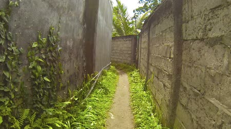 improvised : Walking along a long. narrow alleyway between cement walls. marking the boundary between agricultural properties in a rural community in Southeast Asia. Video 1920x1080