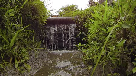 metin alanı : Water from an agricultural irrigation canal. flowing continuously over the wooden wall of a dam marking the terrace level transition on a rice plantation. Video 1080p