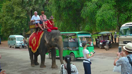 improvised : SIEM REAP. CAMBODIA - CIRCA NOV 2015: Elephant carrying tourists passes amongst vehicle traffic. Video 3840x2160 Stock Footage
