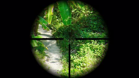 sniper scope : View of a tropical nature trail through the crosshairs of a targeting scope on a sunny afternoon. UltraHD video