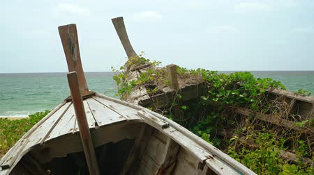 serra : Bow stems of two old abandoned wooden boats partially obscure the tropical seascape as weeds and vines grow between the planks. Vídeos