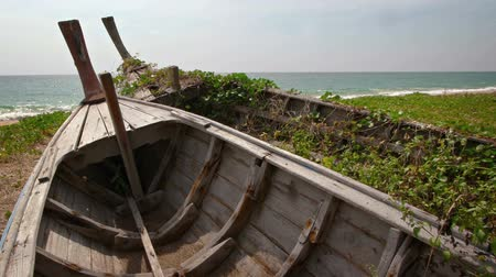 serra : Weeds grow between the planks of two old abandoned wooden boats rotting in the sand along the tropical seacoast in southern Thailand. 1080p footage Vídeos
