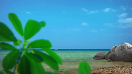 vacation destination : Boat passes along the bold horizon off a rocky tropical beach with plants swaying in a gentle breeze in the foreground. Video 4k 2160p Stock Footage