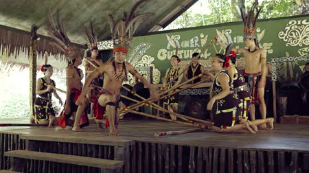 культурный : BORNEO. MALAYSIA - CIRCA JAN 2015: Aboriginal folk dancers perform a lively. traditional dance. with their feet bounding between moving bamboo poles in Borneo. Malaysia. Video UltraHD