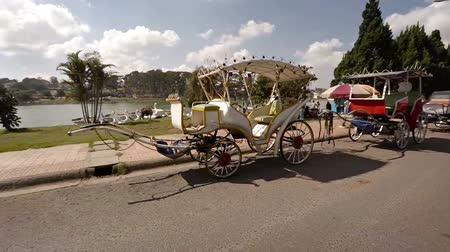 curbside : DALAT. VIETNAM - CIRCA JAN 2016: Ornate horse carriages parked curbside at a riverside park in Dalat. Vietnam. Video FullHD 1080p Stock Footage