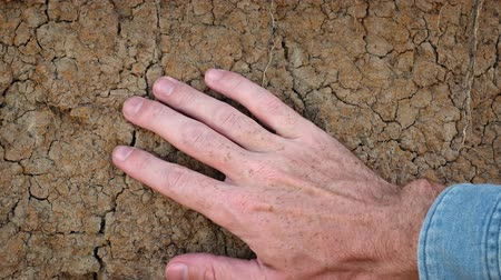 сухой : Trembling male hand touching the dry soil. Video UltraHD 4k
