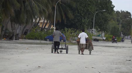 porters : MAAFUSHI. MALDIVES - CIRCA DEC 2016: Local porters pushing carts for tourists luggage at the port on Maafushi Island. FullHD video