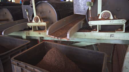 pulverizado : Factory machines sort dried and pulverized tea leaves into bins at a processing plant in Nuwara Eliya. Sri Lanka. with sound. 4k footage