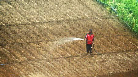 аккуратный : NUWARA ELIYA. SRI LANKA - CIRCA DEC 2016: Farmer watering his field with a hose in Nuwara Eliya.