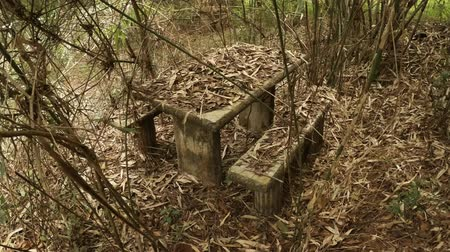 çürümüş : Thailand. Chang Mai. A table and two benches. abandoned in a tropical park. FullHD 1080p video Stok Video