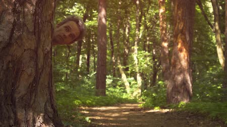 fatörzs : Creepy clip of a mans head emerging slowly from behind a tree trunk. wearing a strange expression. in a forested wilderness. 1080p stock footage