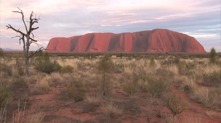 rocks red : PR available - image approved for commercial use by Park authorities. Uluru - Ayers Rock. Aboriginal sacred place. UNESO world heritage. Sunrise sun is color painting red sandstone rock. Time lapse.