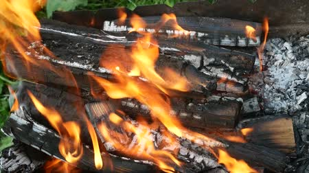 tremble : Burning firewood with tongue of flame in a rusty metal tray for the cooking outdoors, close-up Stock Footage