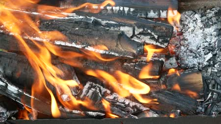 tremble : Burning firewood with tongue of flame in a rusty metal tray, close-up background Stock Footage