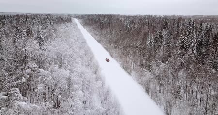 Aerial view of a snowy forest and road with orange car in the winter.