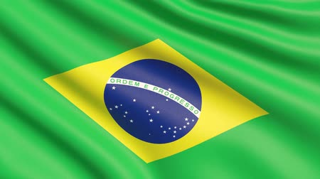 The flag of Brazil. Waved highly detailed fabric texture.