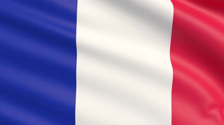 francja : The flag of France. Waved highly detailed fabric texture.