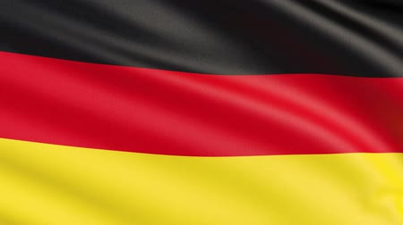 The flag of Germany. Waved highly detailed fabric texture.