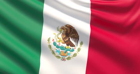 The flag of Mexico. Waved highly detailed fabric texture.
