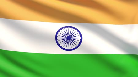 bandeira : The National Flag of India Vídeos
