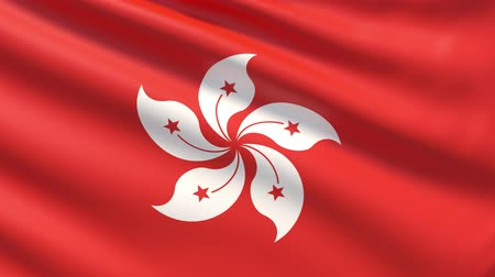 прапорщик : The flag of Hong Kong. Waved highly detailed fabric texture. Стоковые видеозаписи