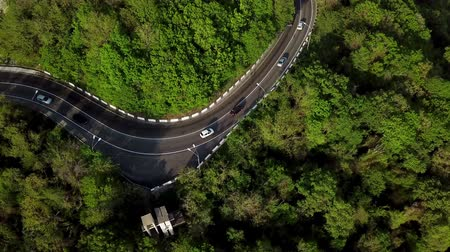 ралли : Aerial top down view: of cars driving on zig zag winding road through lush dense spruce forest on mountain slope.