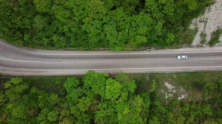 destinace : Car Is On The Country Road. Driving Through The Evergreen Forest. Top View Dostupné videozáznamy