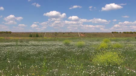 európa : flowered field landscape with highway in Castilla Spain