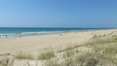 дюна : landscape from dune of Vejer Palmar Beach seaside with golden sand, blue green turquoise ocean water, waves and horizon blue clean sky in Cadiz Spain