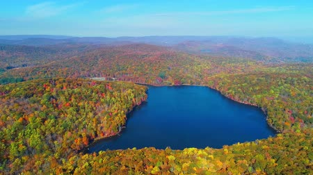 yedi : Aerial view of lake in Autumn with colorful foliage Stok Video
