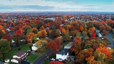Aerial view of residential area in Autumn with colorful foliage Stockvideo