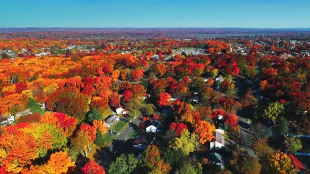 Aerial view of residential area in Autumn with colorful foliage Dostupné videozáznamy