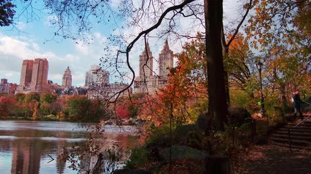 Central Park walk view in Autumn with foliage in Midtown Manhattan New York City Dostupné videozáznamy