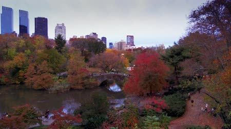 Central Park al crepuscolo timelapse in autunno con fogliame a Midtown Manhattan New York City Filmati Stock
