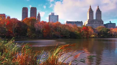 luksus : New York City Central Park in Autumn with skyscrapers apartment and lake