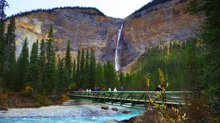 np : Yoho NP, Canada - September 26, 2018: Takkakaw Falls with bridge and tourists timelapse view.  Takkakaw Falls is one of the famous travel attractions in in Yoho National Park.