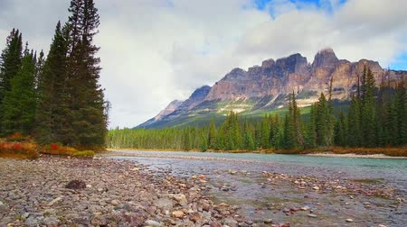 buzul : Walk at waterfront of Castle Mountain in Banff National Park, Canada.