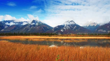 jasper : Colorful grass and snow mountain at lake waterfront timelapse panning view in Jasper National Park, Canada.