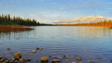 jasper : Misty lake sunrise timelapse panning with foggy snow mountain in Jasper National Park, Canada. Stock Footage
