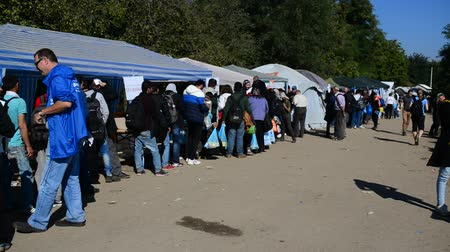opotovac : Group of refugees leaving Serbia and Entering Croatia. October 4, Bapska, Serbia