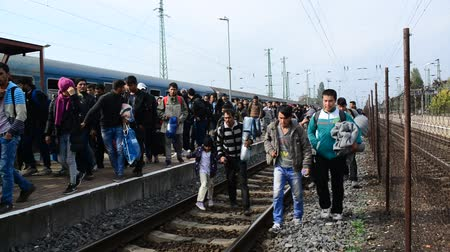 opotovac : Big group of refugees leaving Hungary and going into Austria. October 6, Hegyeshalom, Hungary