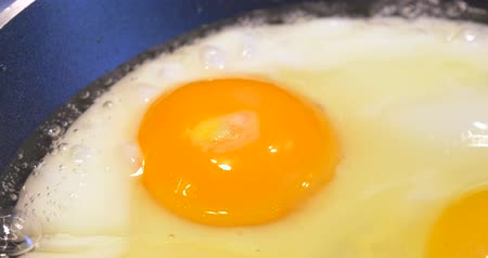 frigideira : Fried Egg In Frying Pan Close Up