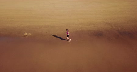 sportolók : Aerial Drone View Of Healthy Sportive Woman Running On Beach Near Ocean Stock mozgókép