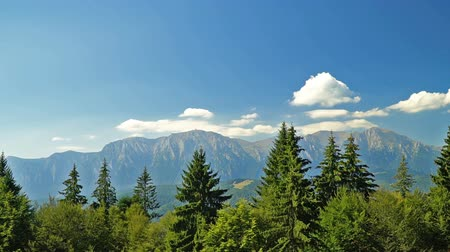 Beautiful Carpathian Mountains Summer Landscape In Romania